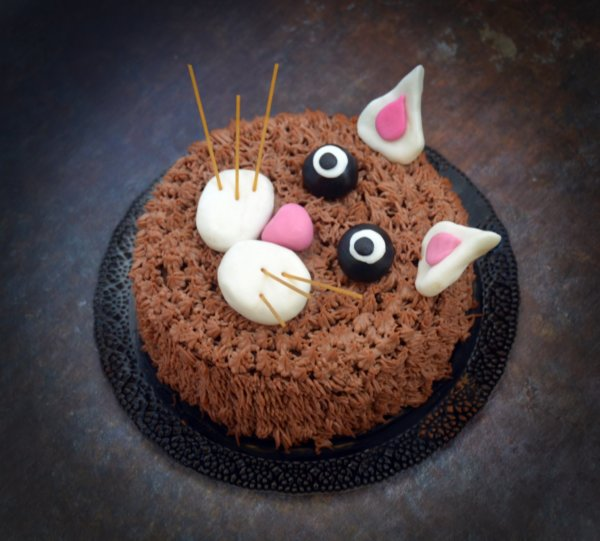 cica torta képek Cicás formatorta   szőrös minta készítése habzsákkal! | Sweet & Crazy cica torta képek